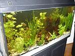 aquarium07 tn