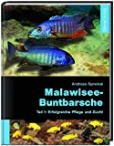 Malawisee-Buntbarsche, Teil 1: Erfolgreiche Pflege...
