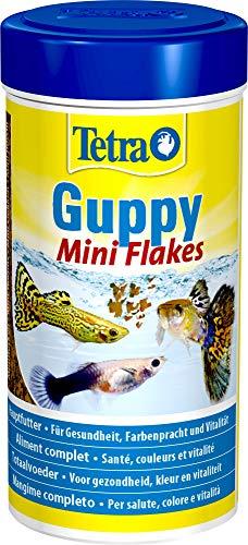 Hauptfutter für Mollys & Guppys