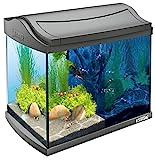 *Tetra AquaArt Discovery Line LED Aquarium-Komplett-Set 20 Liter anthrazit (inklusive LED-Beleuchtung, Tag- und Nachtlichtschaltung, Innenfilter und Aquarienpumpe, ideal für Garnelen)