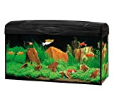 *DehnerGute Wahl Aquarium Starterset Scout mit LED-Beleuchtung, ca. 60 x 30 x 30 cm, 54 l, Glas/Kunststoff, transparent/schwarz