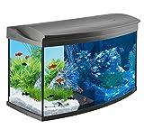 Tetra AquaArt Evolution Line LED Aquarium-Komplett-Set 100 L (inklusive LED-Beleuchtung, Tag- und Nachtlichtschaltung, EasyCrystal Innenfilter und Aquarienheizer) Farbe anthrazit