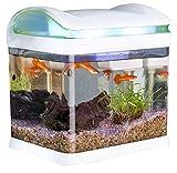 *Quarantänebecken (Set) für erkrankte Fische