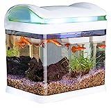Quarantänebecken (Set) für erkrankte Fische