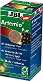 JBL ArtemioSal 30907 Eier zum Anmischen von Lebendfutter, Eier 40 ml