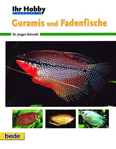Guramis und Fadenfische, Ihr Hobby