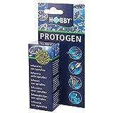 *Hobby Protogen, 1er Pack (1 x 20 ml)