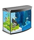 Tetra AquaArt Evolution Line LED Aquarium-Komplett-Set 130 L (inklusive LED-Beleuchtung, Tag- und Nachtlichtschaltung, EasyCrystal Innenfilter und Aquarienheizer) Farbe anthrazit