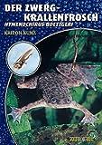 Der Zwergkrallenfrosch: Hymenochirus boettgeri (Art für Art / Terraristik)