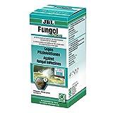 JBL Fungol Plus 250 1006300 Heilmittel gegen Pilzinfektionen fr Aquarienfische, 200 ml