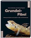 Grundel-Fibel: Haltung und Zucht von Grundeln im Süß- und Brackwasser