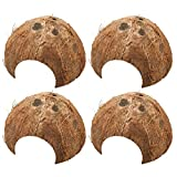 Bac-kitchen 4 Stück Kokosnuss Halbschale, Kokosnuss-Schale Einsiedlerkrebs Versteck, als Höhle für Aquarien und Terrarien, Kokoshöhle - Froschhöhle -Ablaichplatz, Aquarium-Dekoration (ø 10-14 cm)