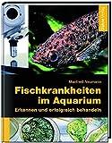 *Fischkrankheiten im Aquarium: Erkennen und erfolgreich behandeln