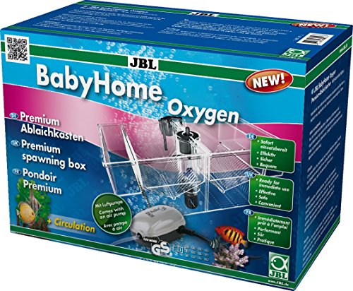 Unsere Empfehlung: Komplett Set Ablaichkasten mit Luftpumpe für ideale Geburt- und Aufzucht