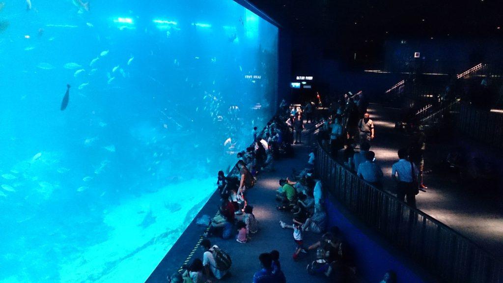 Rang 2: Marine Life Park Singapore